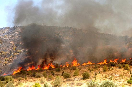 πυρκαγιά - i